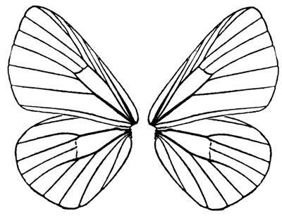 Колекция от клипарти на крила на пеперуди (49)
