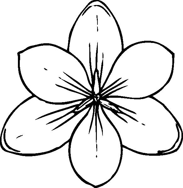 Sammlung von Gänseblümchen-Blumen-Schablone (52)