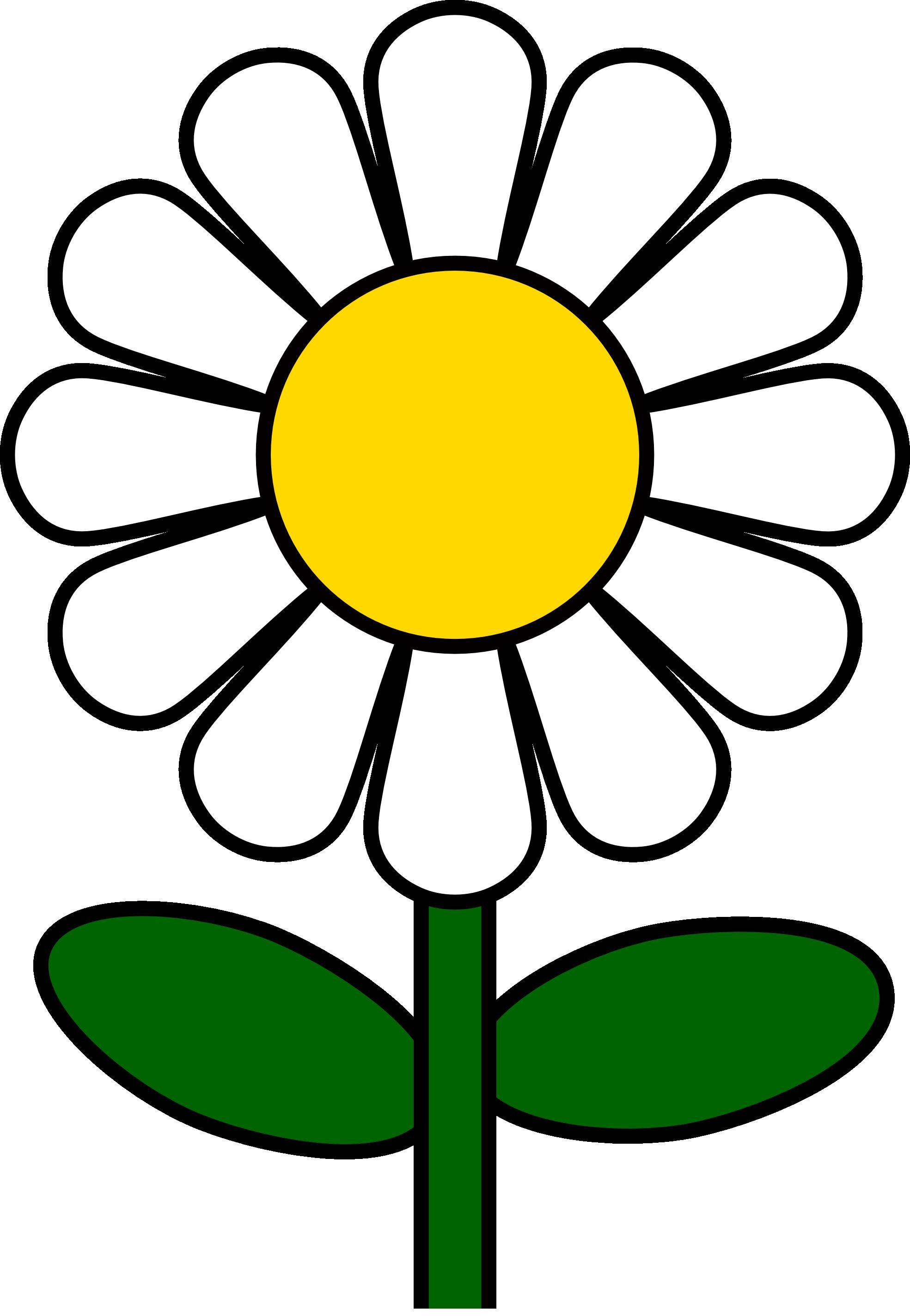 Коллекция цветочных клипартов ромашки (49)