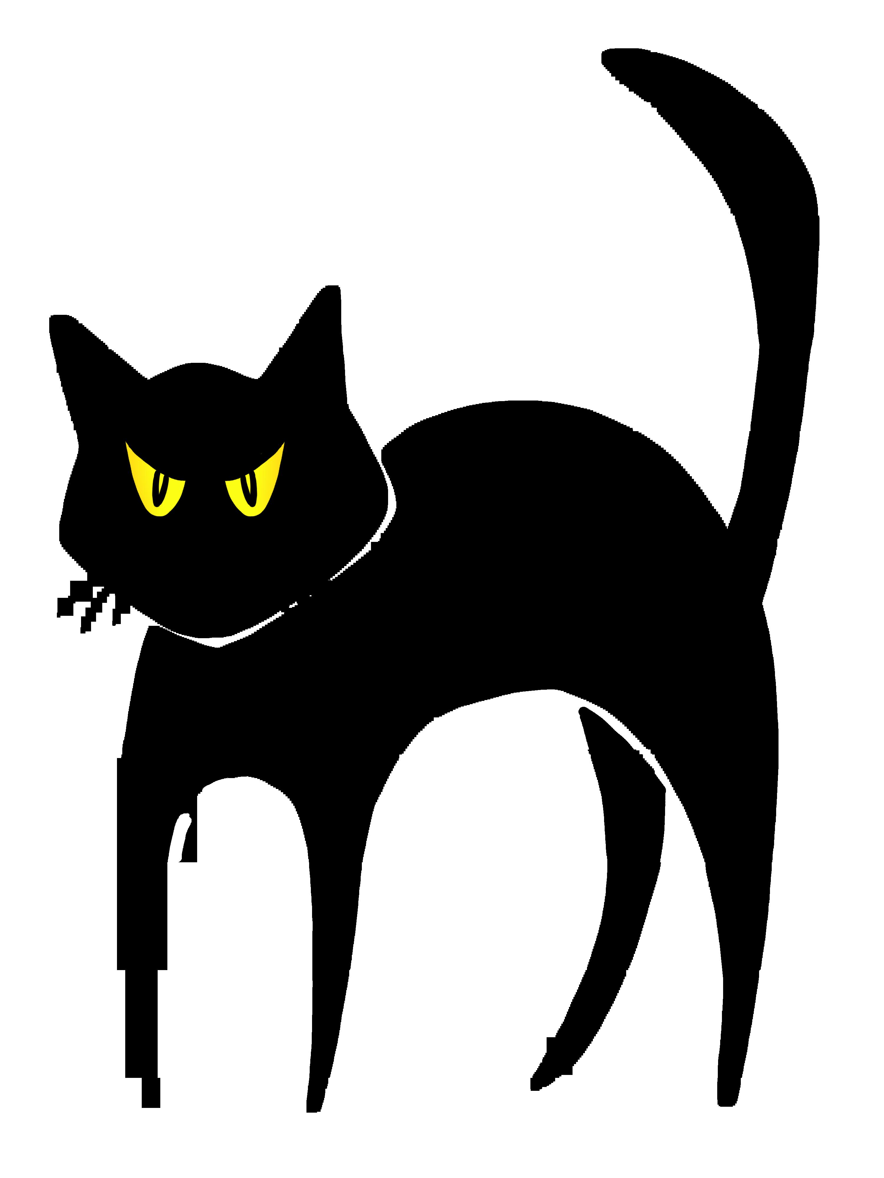 Sammlung schwarzer Katzenbilder (64)