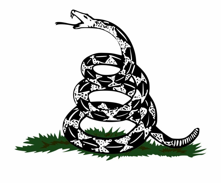 Čūskas siluets # 1127647